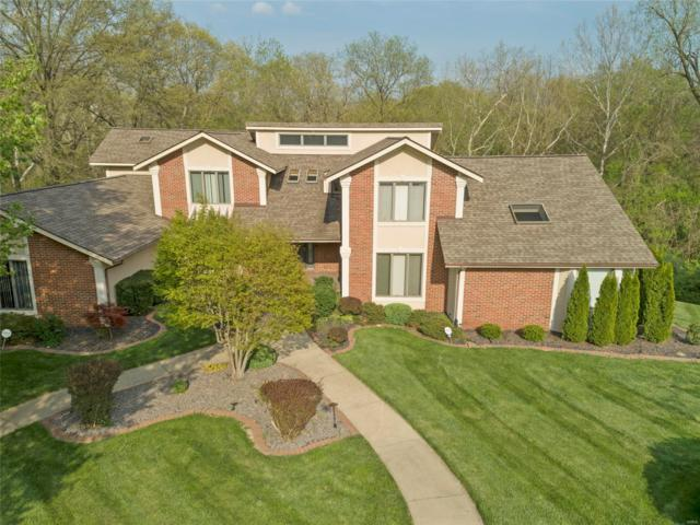23 Castle Pointe Drive, Belleville, IL 62223 (#18006397) :: Sue Martin Team