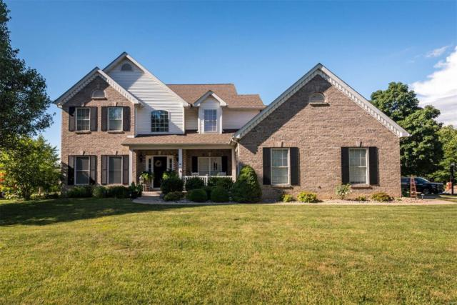 1617 Tenth Fairway Court, Belleville, IL 62220 (#18008945) :: Sue Martin Team