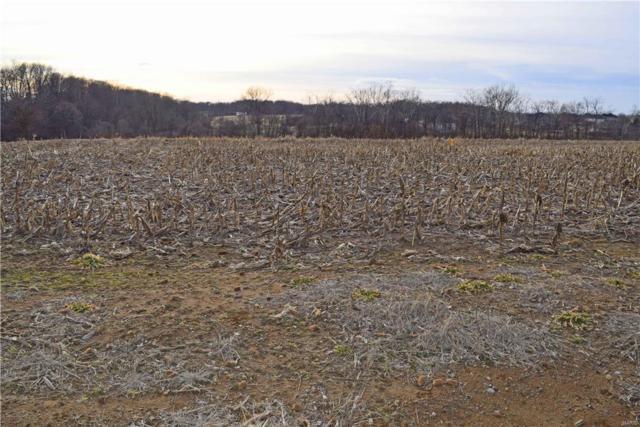 6723 Red Barn Farms Lane, Millstadt, IL 62260 (#18010166) :: Realty Executives, Fort Leonard Wood LLC