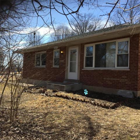 6233 Christy Boulevard, St Louis, MO 63116 (#18011172) :: Clarity Street Realty