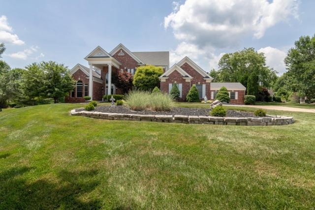 17927 White Robin Court, Chesterfield, MO 63005 (#18016891) :: Sue Martin Team