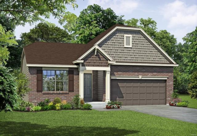 403 Carini Court, Saint Peters, MO 63376 (#18017617) :: PalmerHouse Properties LLC