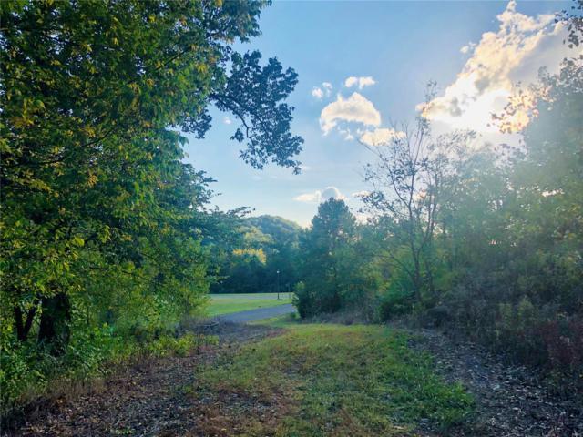 4313 Murdoch Lane, Augusta, MO 63332 (#18026762) :: RE/MAX Professional Realty