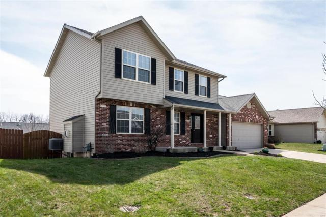 921 Silverlink Drive, O'Fallon, IL 62269 (#18028230) :: St. Louis Finest Homes Realty Group