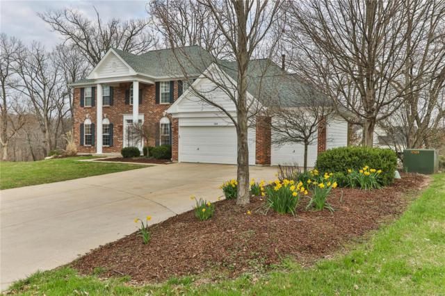 504 Autumn Bluff Drive, Ellisville, MO 63021 (#18028650) :: The Becky O'Neill Power Home Selling Team