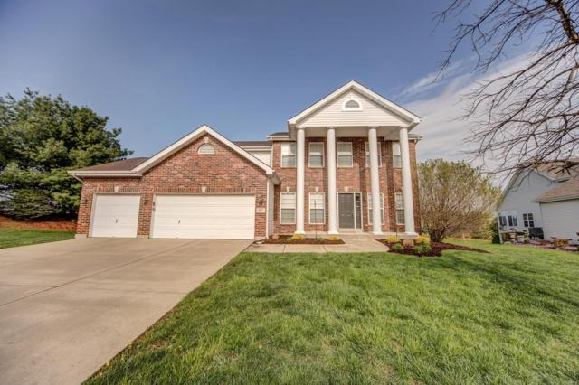 1401 Double Eagle Circle, Belleville, IL 62220 (#18031639) :: Sue Martin Team
