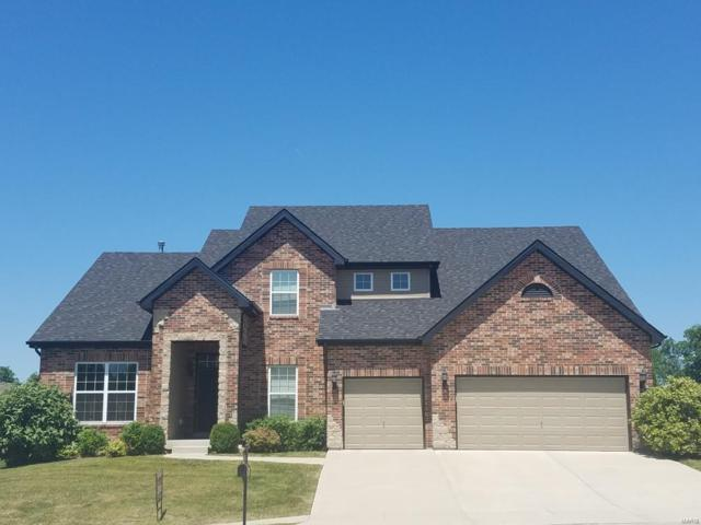 205 Forest Oaks Drive, Caseyville, IL 62232 (#18040743) :: Fusion Realty, LLC