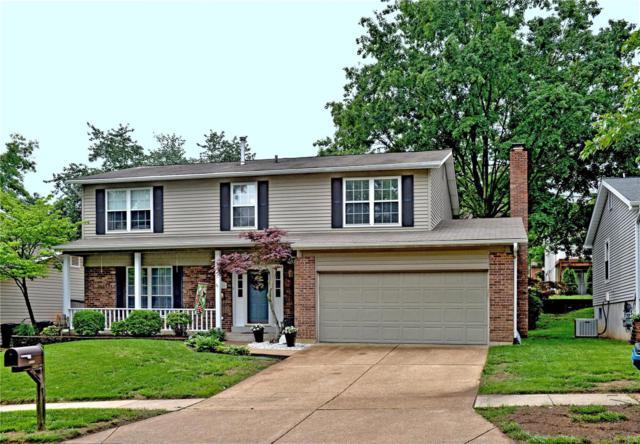 6028 Terri Lynn, St Louis, MO 63123 (#18041955) :: PalmerHouse Properties LLC