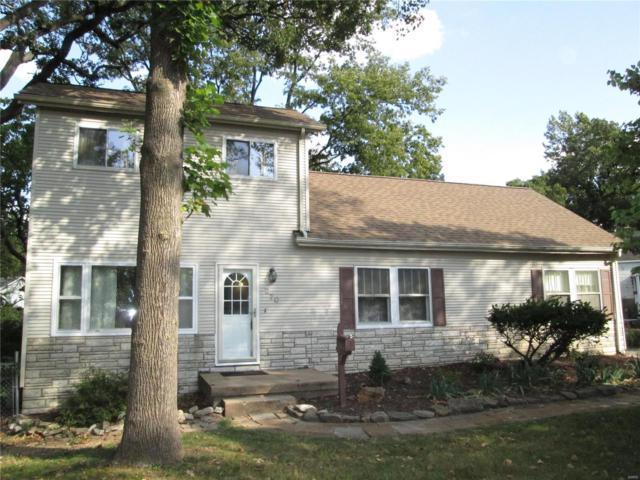 270 Lucille Avenue, Webster Groves, MO 63119 (#18045529) :: Walker Real Estate Team