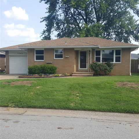 224 Park Lane, Wood River, IL 62095 (#18046458) :: Clarity Street Realty
