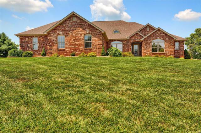 5771 Lake Briar Drive, Millstadt, IL 62260 (#18062658) :: RE/MAX Professional Realty