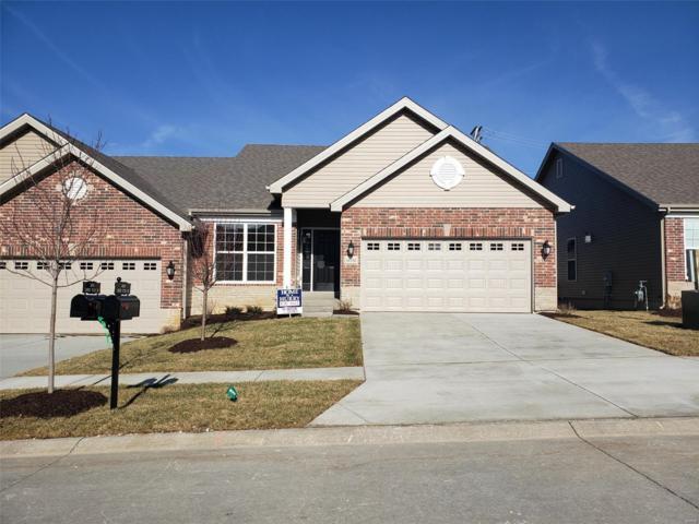 16192 Amber Vista Drive, Ellisville, MO 63021 (#18065391) :: The Kathy Helbig Group