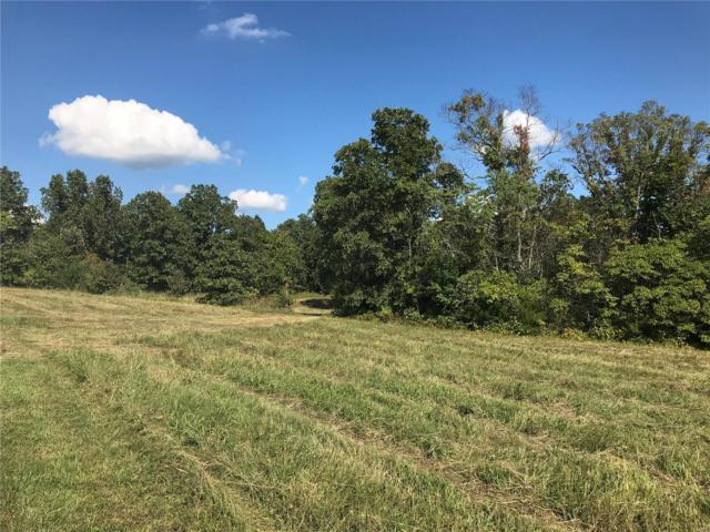 3 Lot 1 Plat Soda Creek, Sullivan, MO 63080 (#18074656) :: The Becky O'Neill Power Home Selling Team