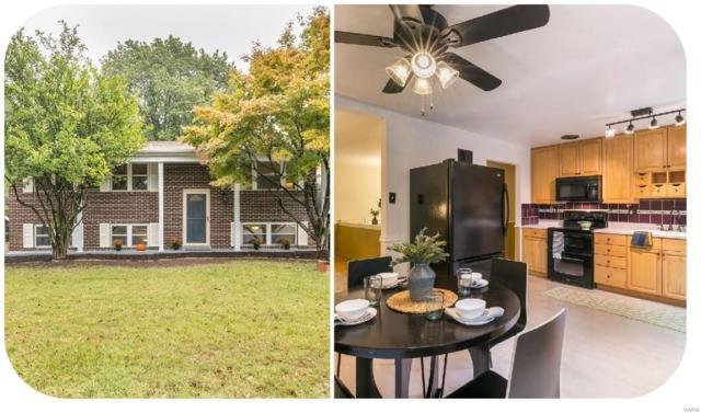 12063 Glenpark, Maryland Heights, MO 63043 (#18082813) :: St. Louis Finest Homes Realty Group
