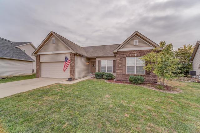 2720 Cheyenne Wells Drive, Shiloh, IL 62221 (#18084381) :: Walker Real Estate Team