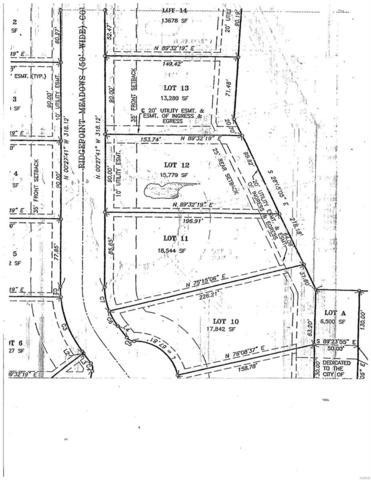 10 Ridgepoint Meadows Ct Court, Union, MO 63084 (#18086218) :: Hartmann Realtors Inc.