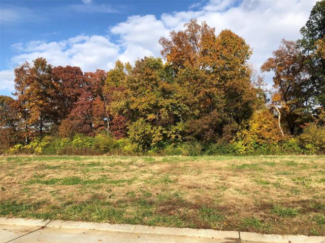 437 Tyler Drive, Troy, IL 62294 (#18087685) :: Fusion Realty, LLC