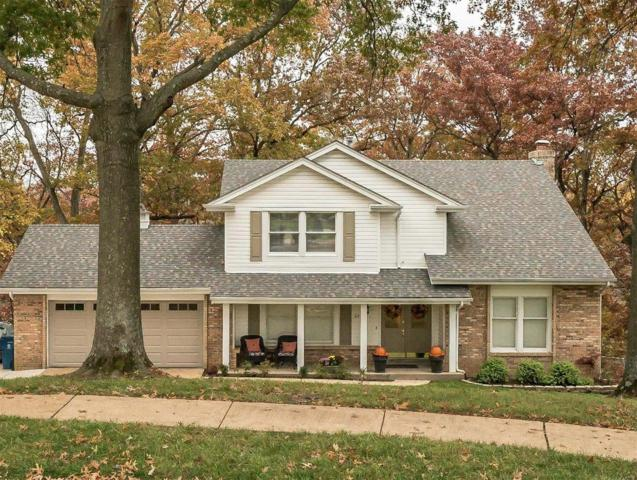 226 Clayton Trails, Ellisville, MO 63011 (#18089245) :: PalmerHouse Properties LLC