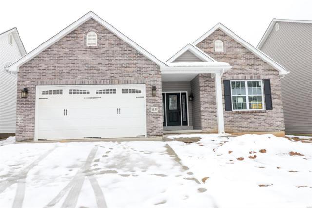 1135 Winter Lake Drive, Fenton, MO 63026 (#19002720) :: PalmerHouse Properties LLC