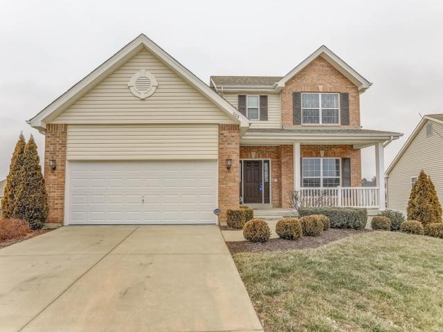 683 Landolakes Circle, Belleville, IL 62220 (#19006074) :: St. Louis Finest Homes Realty Group