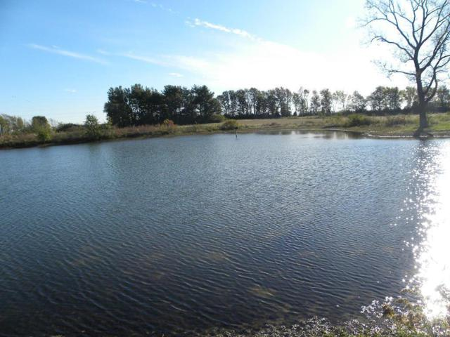 0 State Hwy 109, Jerseyville, IL 62052 (#19008408) :: Fusion Realty, LLC