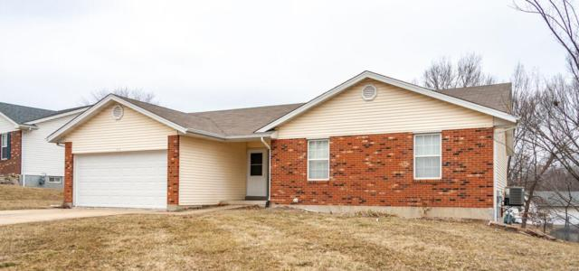 207 Shellbark Drive, Troy, MO 63379 (#19009942) :: RE/MAX Professional Realty