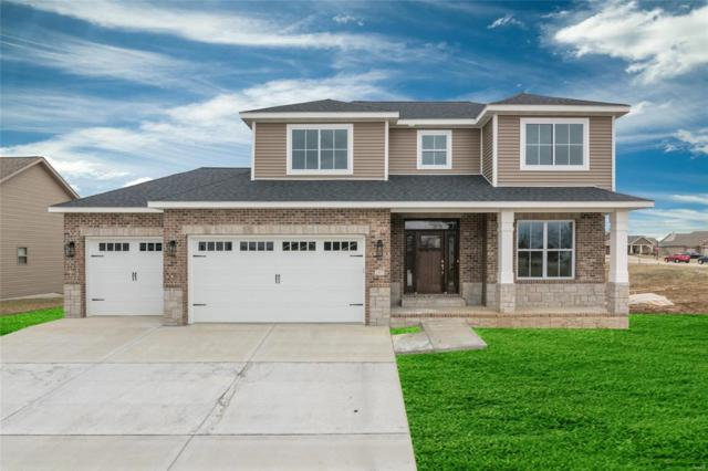 207 Ellington Court, Glen Carbon, IL 62034 (#19014925) :: Fusion Realty, LLC