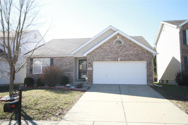 433 Tailfeather Drive, Shiloh, IL 62221 (#19017728) :: Fusion Realty, LLC