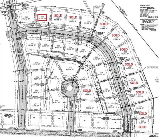 229 Earth Crest Drive, Washington, MO 63090 (#19018889) :: Walker Real Estate Team