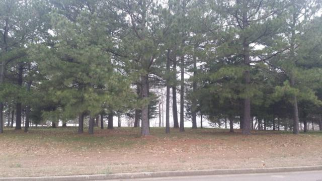 0 W Lot 3 West Highland Circle, Poplar Bluff, MO 63901 (#19019620) :: RE/MAX Professional Realty
