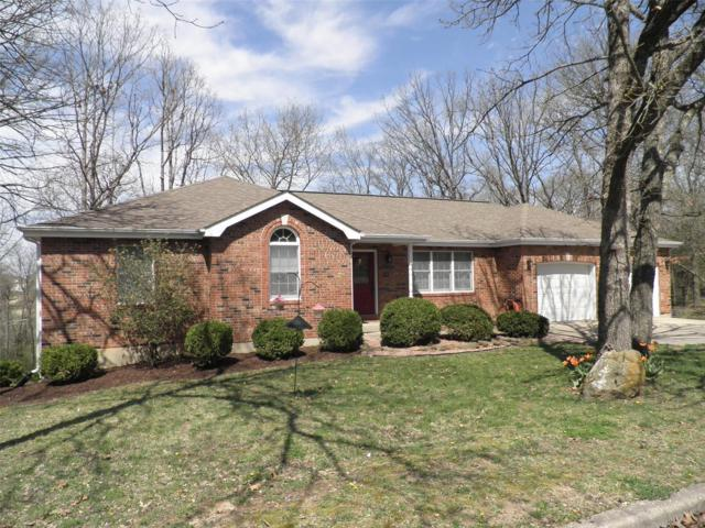 303 Christy Drive, Rolla, MO 65401 (#19024299) :: Kelly Hager Group | TdD Premier Real Estate