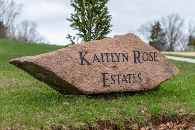 4621 Dylan Drive, De Soto, MO 63020 (#19025565) :: Matt Smith Real Estate Group