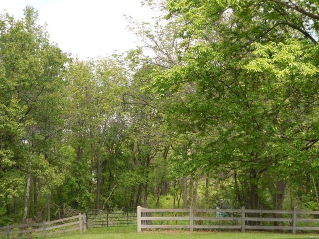 9109 Pike 118, Louisiana, MO 63353 (#19035828) :: The Becky O'Neill Power Home Selling Team