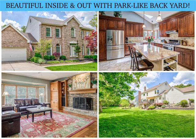539 Autumn Oaks Drive, Ellisville, MO 63021 (#19036400) :: The Becky O'Neill Power Home Selling Team