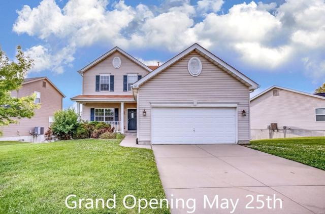 825 Saybrook Falls Drive, Fairview Heights, IL 62208 (#19036683) :: The Becky O'Neill Power Home Selling Team