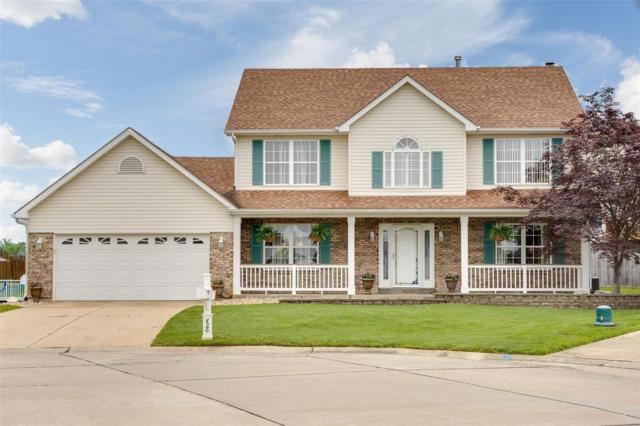 426 Winter Wind Drive, O'Fallon, MO 63366 (#19038169) :: Kelly Hager Group | TdD Premier Real Estate
