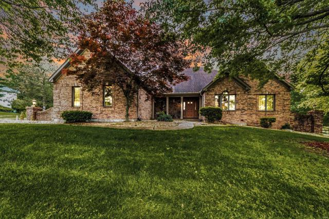 681 Clifden Drive, Weldon Spring, MO 63304 (#19038734) :: Kelly Hager Group | TdD Premier Real Estate