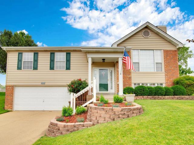 2828 Fox Run Ridge, Arnold, MO 63010 (#19041819) :: Ryan Miller Homes