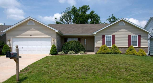 250 Hammerstone Drive, Moscow Mills, MO 63362 (#19043951) :: St. Louis Finest Homes Realty Group