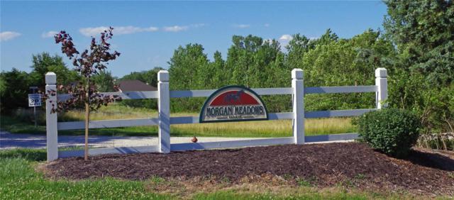 125 Morgan Valley Ln, Foley, MO 63347 (#19047050) :: RE/MAX Professional Realty