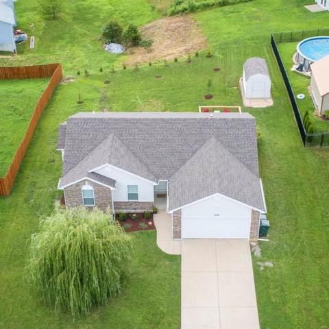 10381 Hawks Nest Drive, Hillsboro, MO 63050 (#19052410) :: The Becky O'Neill Power Home Selling Team