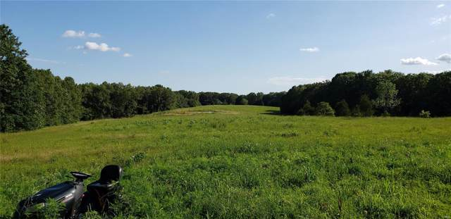 4279 Durbin Road, Bland, MO 65014 (#19055112) :: The Becky O'Neill Power Home Selling Team