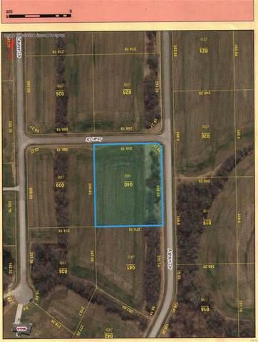 4630 Ashlyn Drive, POCAHONTAS, IL 62275 (#19056541) :: The Kathy Helbig Group