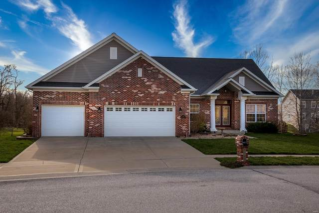 1145 Hightower Place Drive, O'Fallon, IL 62269 (#19063344) :: Kelly Hager Group | TdD Premier Real Estate