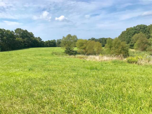 33 Timber Ridge - 12Ac Drive, Marthasville, MO 63357 (#19068792) :: Kelly Hager Group | TdD Premier Real Estate