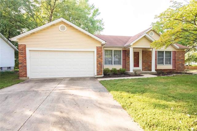 1039 Holly River Drive, Florissant, MO 63031 (#19069540) :: Kelly Hager Group | TdD Premier Real Estate