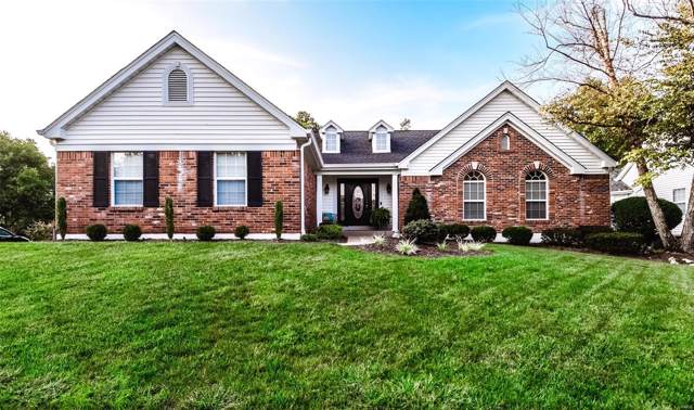 2531 Johnson Place Drive, Ballwin, MO 63021 (#19070409) :: St. Louis Finest Homes Realty Group