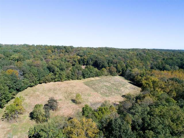 19299 Puellman Road, Wildwood, MO 63005 (#19076851) :: The Kathy Helbig Group