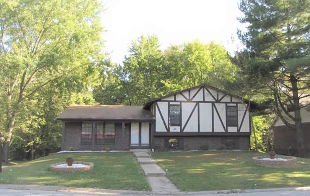 216 Bobbie Drive, Belleville, IL 62226 (#19077309) :: Hartmann Realtors Inc.