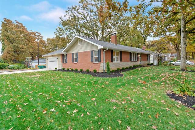 1102 Cheshire Lane, Webster Groves, MO 63119 (#19081586) :: The Kathy Helbig Group